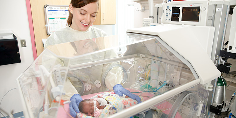Educational Formats Neonatal Nurse Practitioner Msn School Of