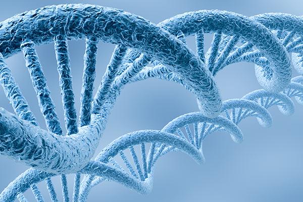 School of Nursing awarded NIH grant to provide genomics education to nurse researchers and educators